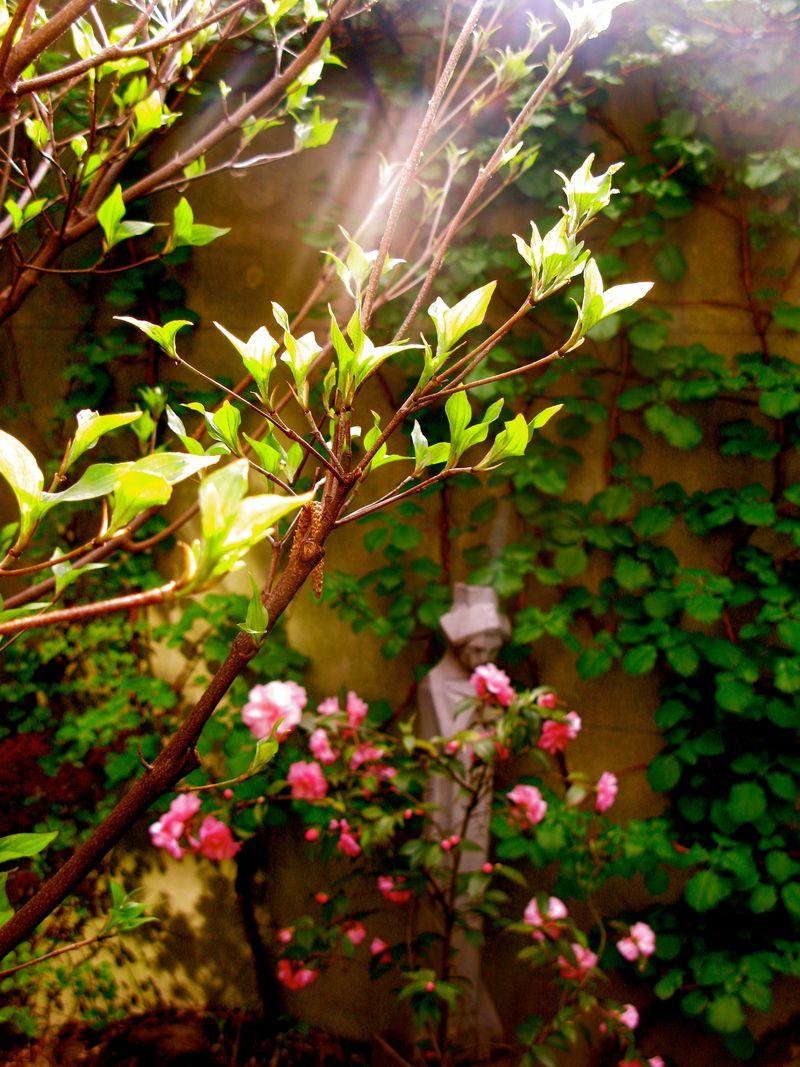 The Garden Report (Spring and Death) - Matthew Gallaway