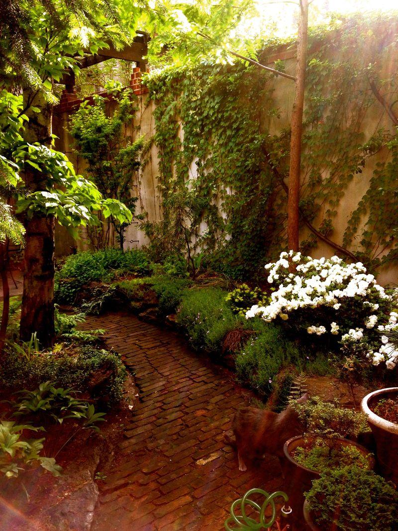 The Garden Report (Late Spring) - Matthew Gallaway